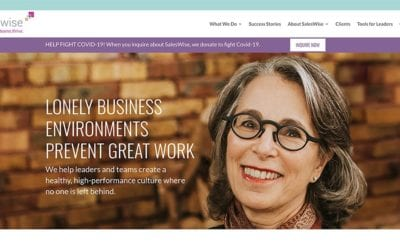 New website redesign & conversion to WordPress: SalesWise
