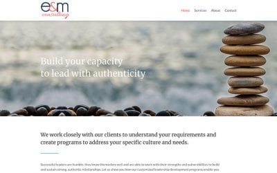 New website redesign and conversion to WordPress: E & M Consulting