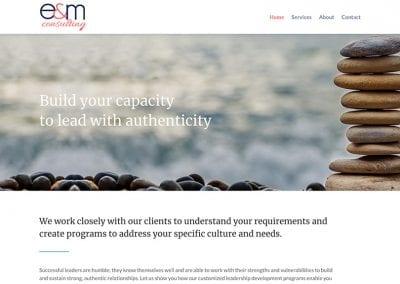 E & M Consulting